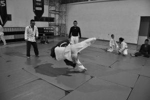 une photo qui montre une prise de judoka