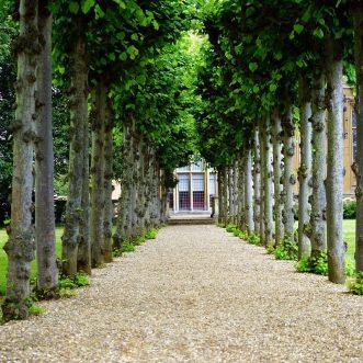 Et si vous optiez pour un parc de loisirs résidentiel pour vos vacances ?